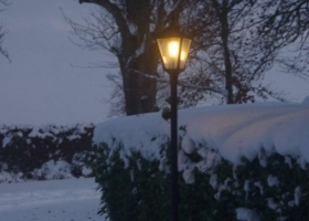 snowy-avenue